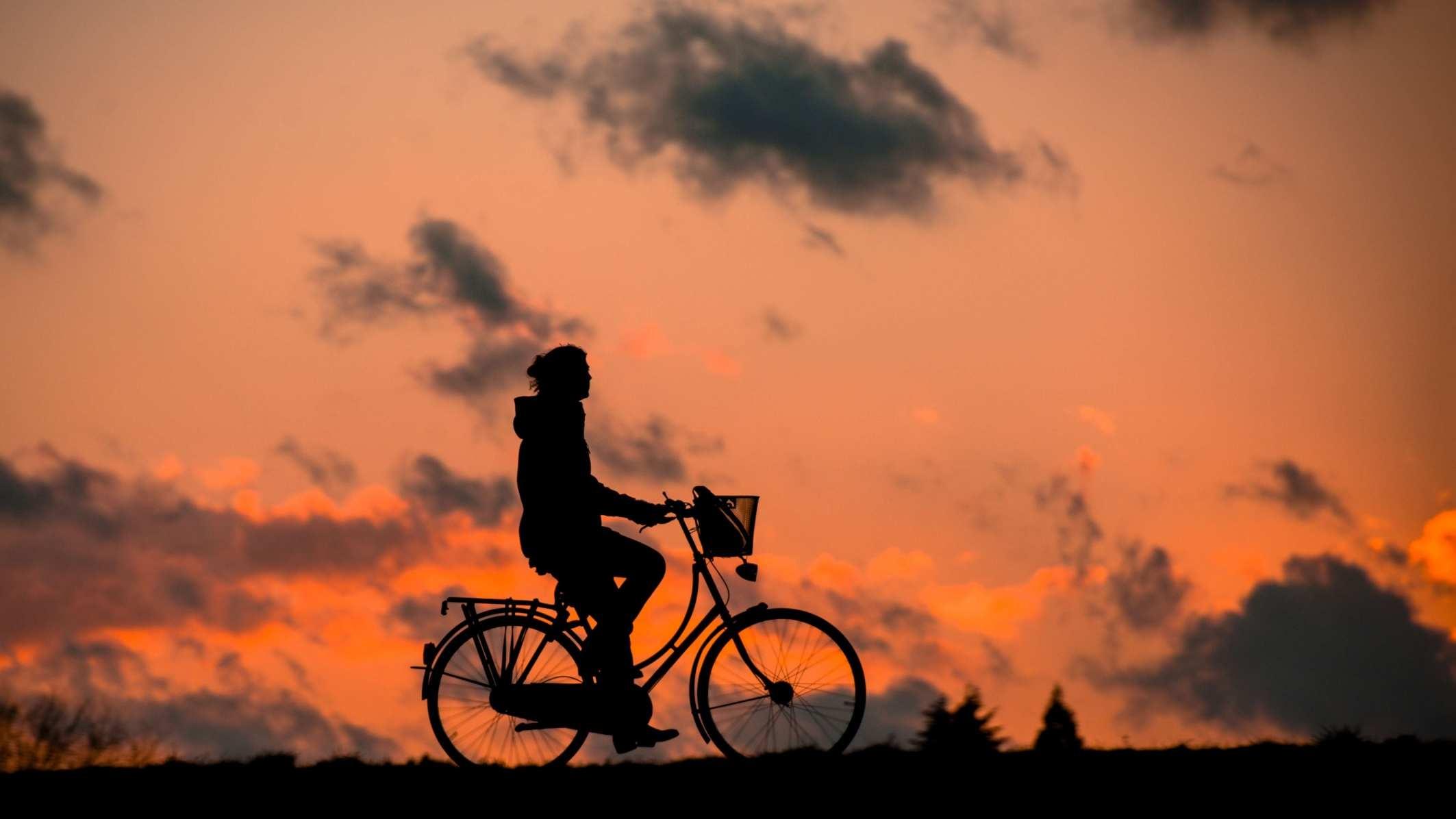 fischerhaus-fahrrad